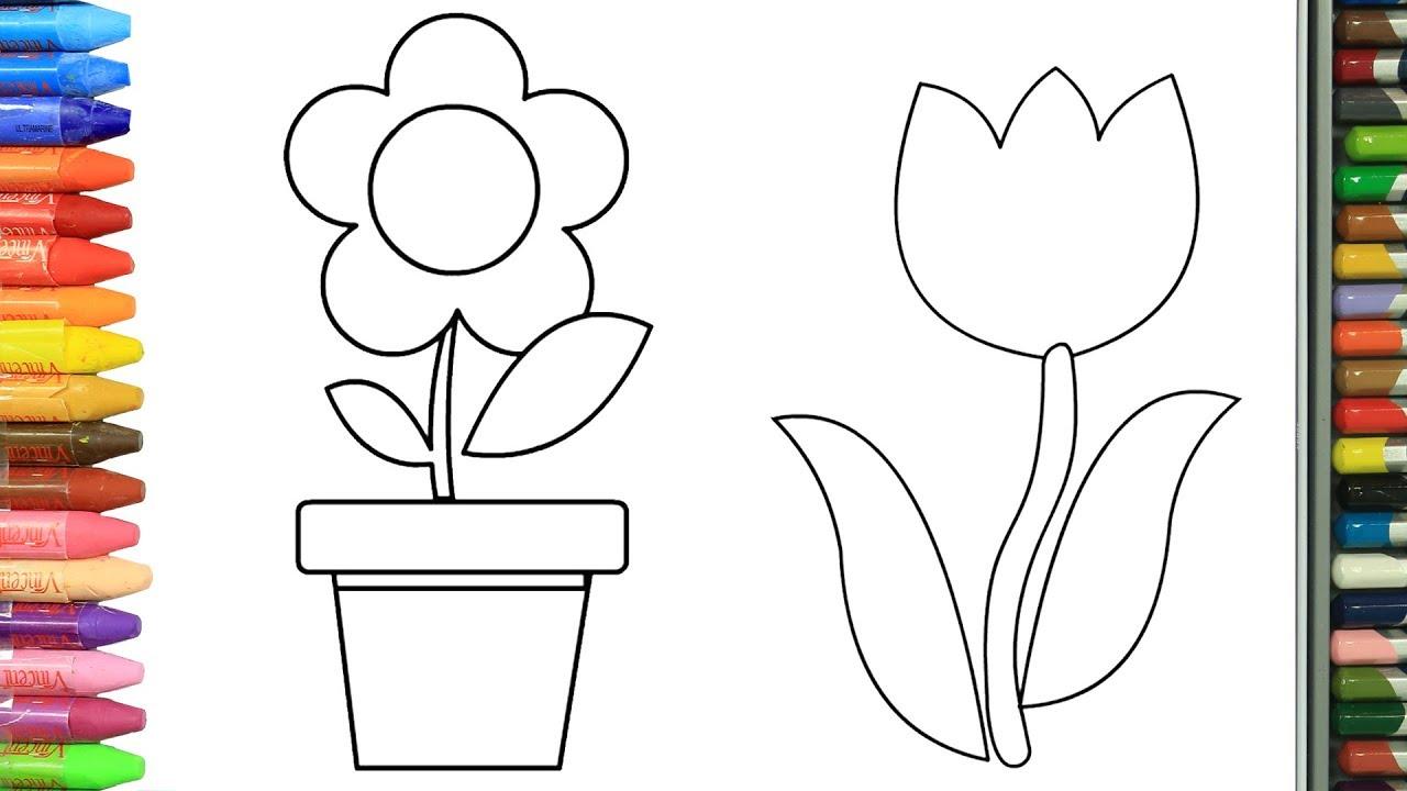 Cómo Dibujar Y Colorear Flores Dibujos Para Niños Aprender Colores