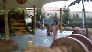 zwembad eiland van Maurik
