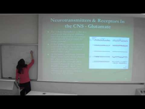 Cellular Biology and Neurobiology 10/12/2013