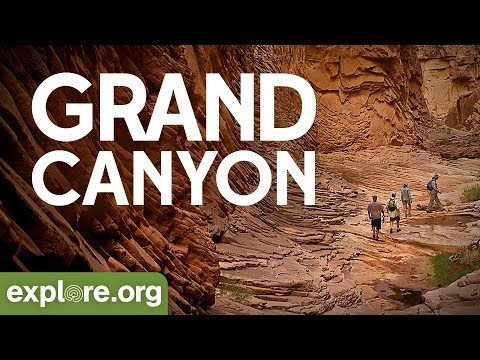 Grand Canyon | Explore Films