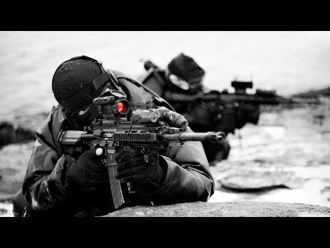 Top 10 Best Assault Rifles in the World HD   2018-19