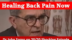 hqdefault - Sarno Back Pain Download