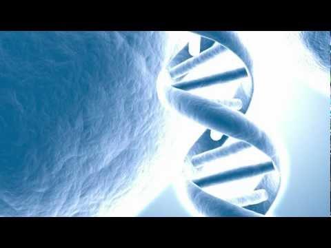 DNA AS COMPUTER-LIKE REWRITABLE DATA STORAGE