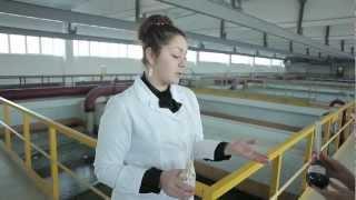 Как это работает: технология очистки воды(, 2013-03-11T09:26:14.000Z)