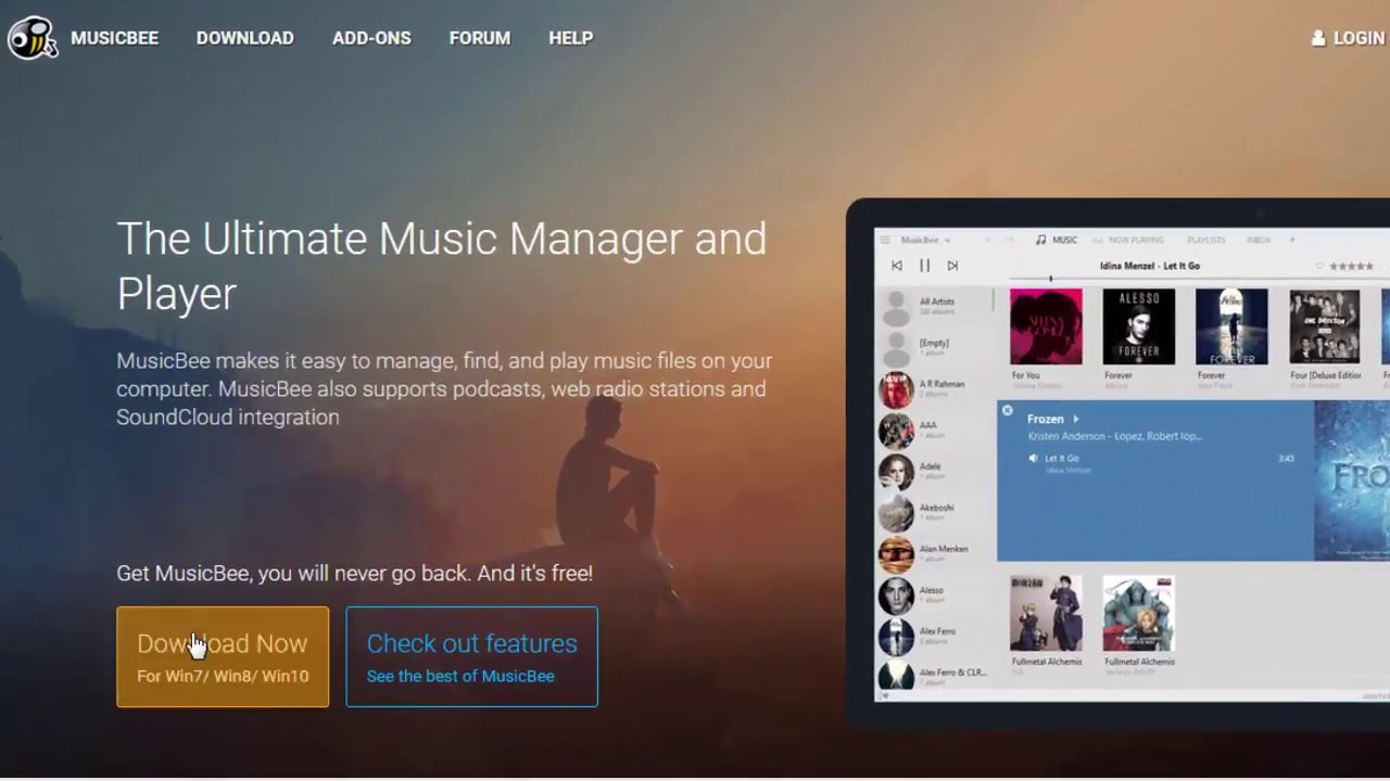How to Install MusicBee on Windows