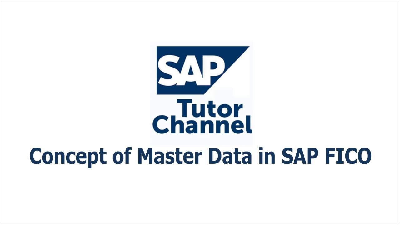 Concept of Master Data in SAP FICO