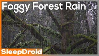 ► Fall Asleep Fast ~Foggy Forest Rain Sounds for Sleeping, Sleep All Night (Lluvia para dormir)