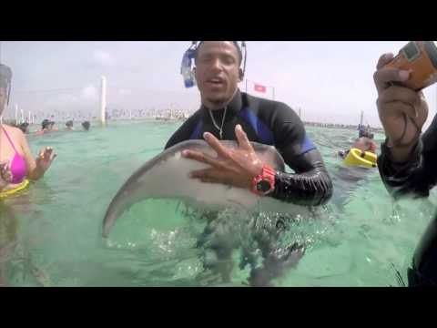 Marinarium Excursion @ Dominican Republic HD