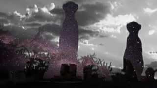 Method Man - P.L.O Style (Cosmos Jones Remix)