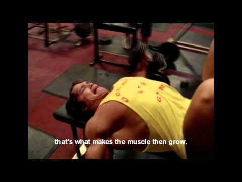 The advantages of Weight Lifting Why Pumping Iron is perfect for Everybody