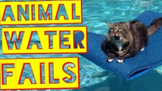 ANIMAL WATER FAILS 2017 | Funny Fail Compilation