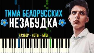 Тіма Білоруських - Незабудка | На Піаніно | Ноти