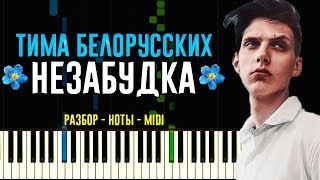 Download Тима Белорусских - Незабудка | На Пианино | Ноты Mp3 and Videos
