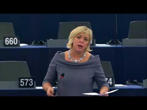 Hilde Vautmans 30 Dec 2017 plenary speech on PESCO