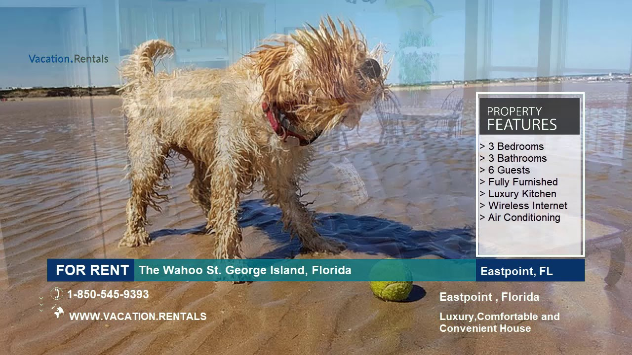 Florida | Vacation Rentals | The Wahoo St  George Island - 6 Guests
