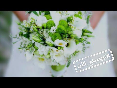 عقد قران الممثلة المصرية هنا الزاهد  والممثل أحمد فهمي  - 18:55-2019 / 9 / 11