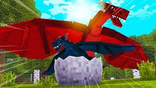 HOW TO TRAIN YOUR BABY DRAGON IN MINECRAFT! (Crazy Minecraft)