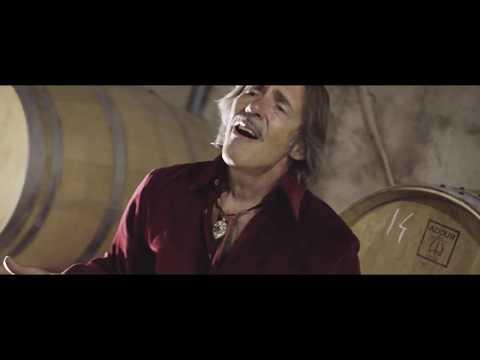 Marco Ferradini - L'Uva E Il Vino