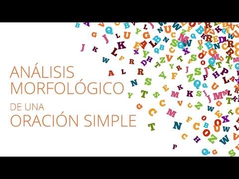 Análisis Morfológico De Una Oración Simple Masterd Youtube