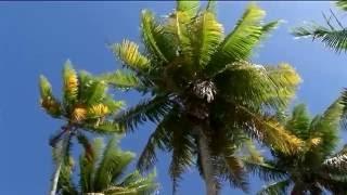 Au cœur de la Polynésie française