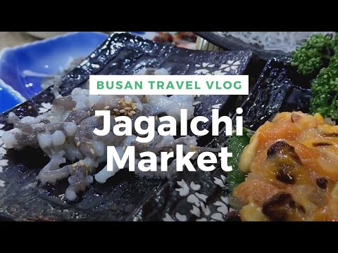 Eating Live Octopus at Jalgachi Market, Claw Machines, & KTX from Busan to Seoul