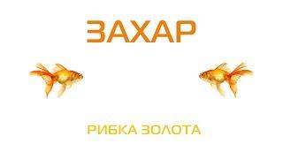 Захар Рибка золота 2006 українська музика українські пісні
