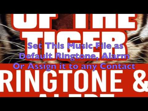 Survivor - Eye Of The Tiger Ringtone and Alert