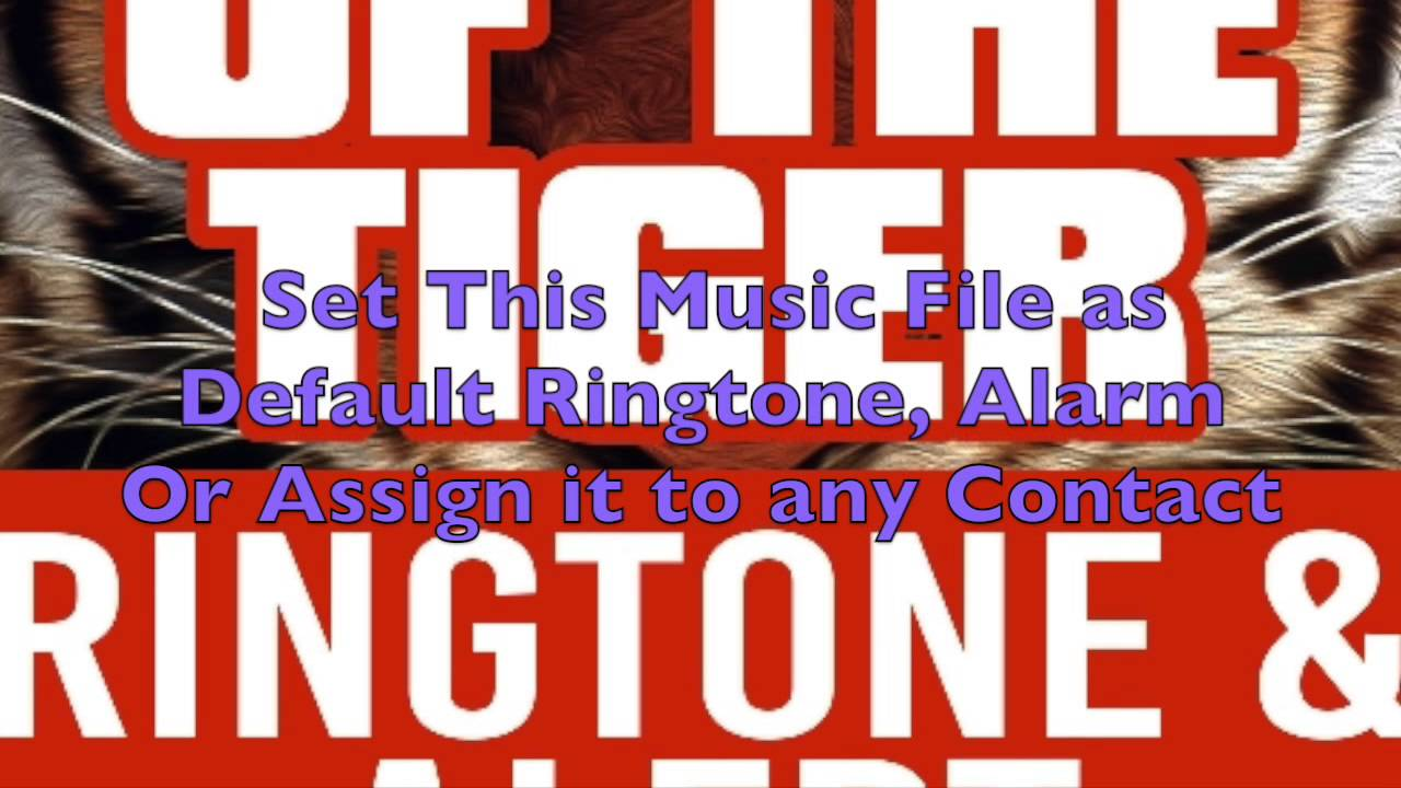 Eye of the tiger ringtone for android free download and software.