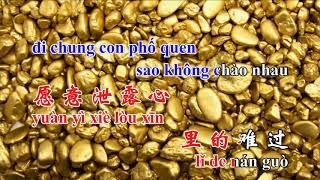 Những Lời Dối Gian, nhạc hoa, song ngữ karaoke, 言不由衷,Yan Bu You Zhong