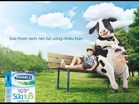 Tổng hợp quảng cáo sữa Vinamilk vui nhộn
