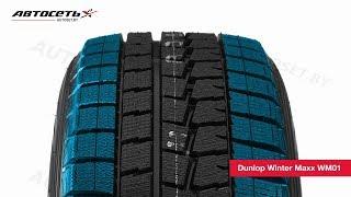 Обзор зимней шины Dunlop Winter Maxx WM01 ● Автосеть ●
