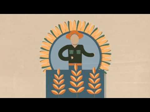 Crop Insurance Industry Rate of Return