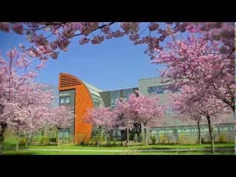 Vidéo L'excellence métropolitaine ouvre ses portes - voix off - Film pour la métropole Lilloise.