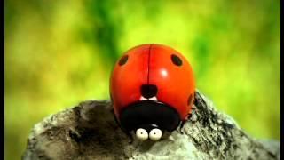 видео БОЖЬЯ КОРОВКА СМОТРЕТЬ ОНЛАЙН бесплатно мультфильм в хорошем качестве