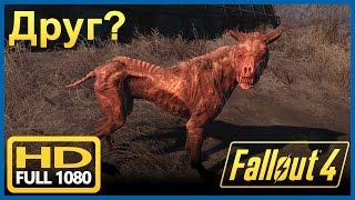 Fallout 4 - Раненая собака