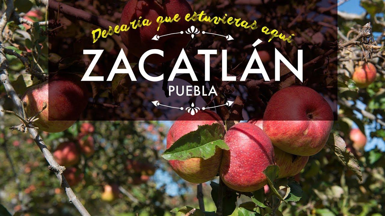 Resultado de imagen para zacatlan de las manzanas