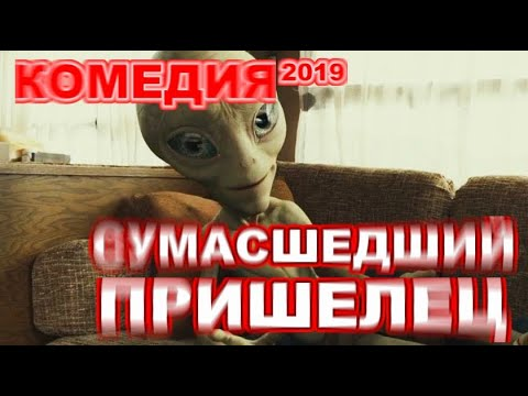 Пол кино пол мультфильм