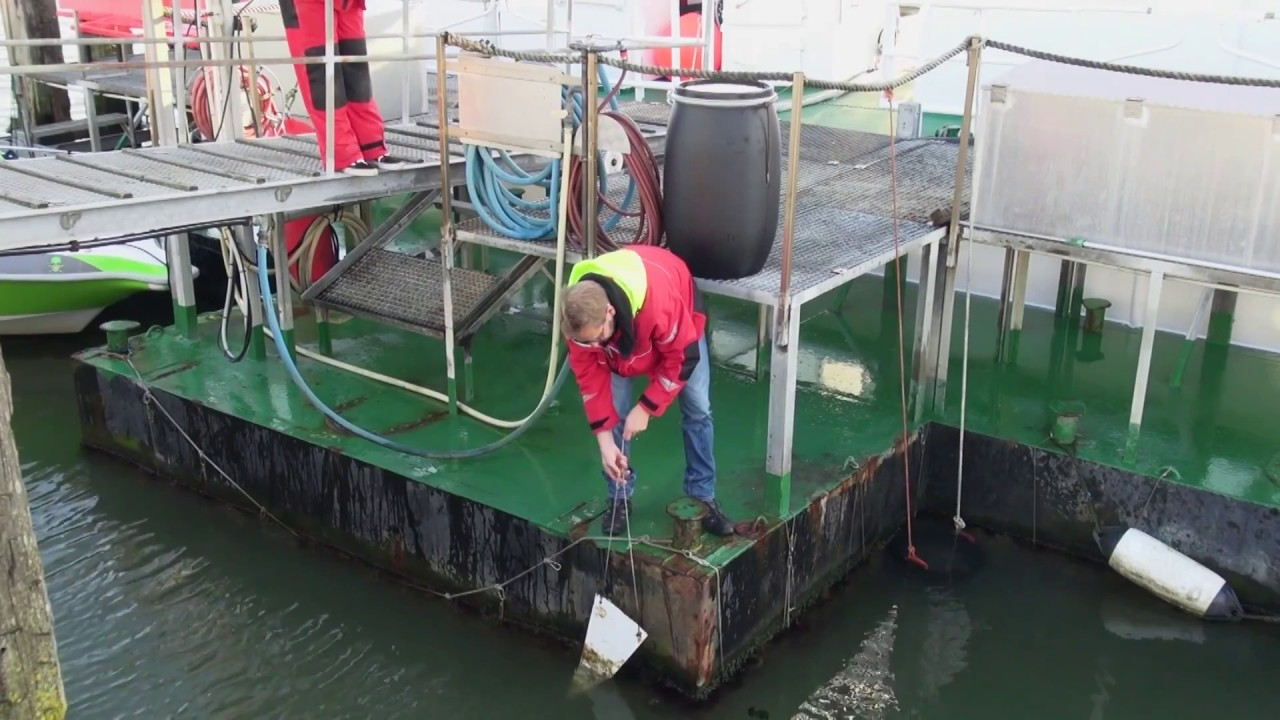 RENOLIT DOLPHIN S Test Results - Fouling Release