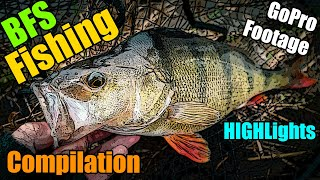 BFS Fishing Highlights Lure Fishing for Perch Trout Pike Zander Chub GoPro Footage