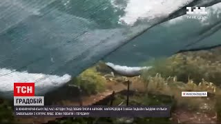 Новости Украины: Николаевскую область после аномальной жары накрыл град