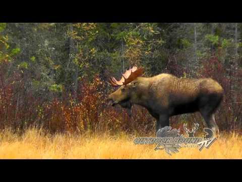 Outdoor Bound TV Episode 52 - Jeff Schafer Manitoba Moose