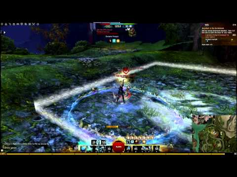 Guild Wars  Hunter Pve Solo Build