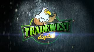 TRDWST_Full_HD.mpg
