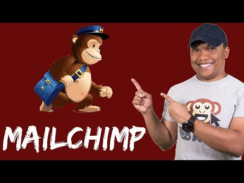 MailChimp & WordPress - How to Build Your WordPress Subscribers/Mailing List with MailChimp
