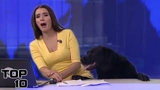 Top 10 Funniest Live TV News Interviews