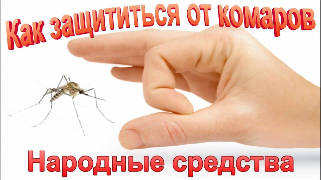 народные средства от паразитов у человека