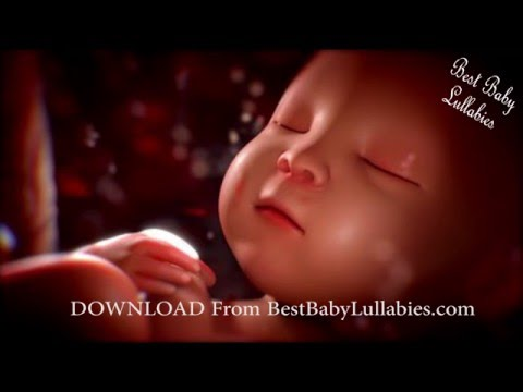 Baby White Noise Sleep Music Baby Womb Sounds Baby Heartbeat