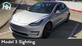 Tesla Model 3 Sighting