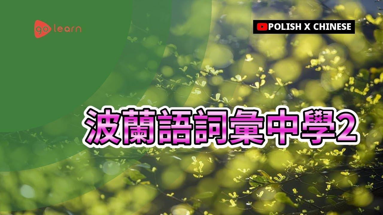 波蘭語詞彙中學2   Golearn - YouTube