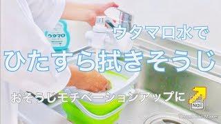【おそうじ動画】ひたすら拭きそうじ!ウタマロ水を使います